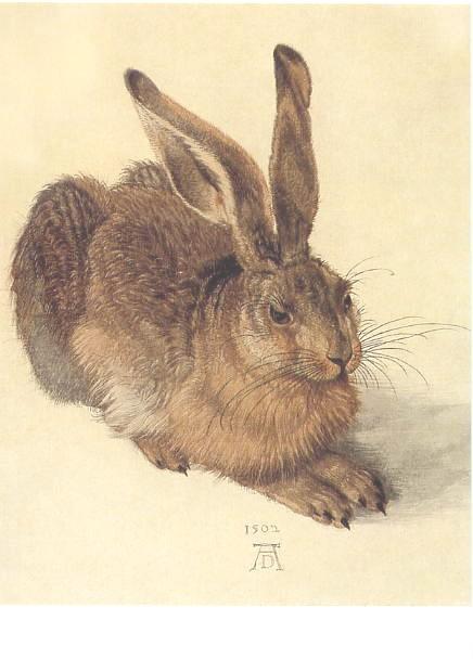 アルブレヒト・デューラーの画像 p1_14